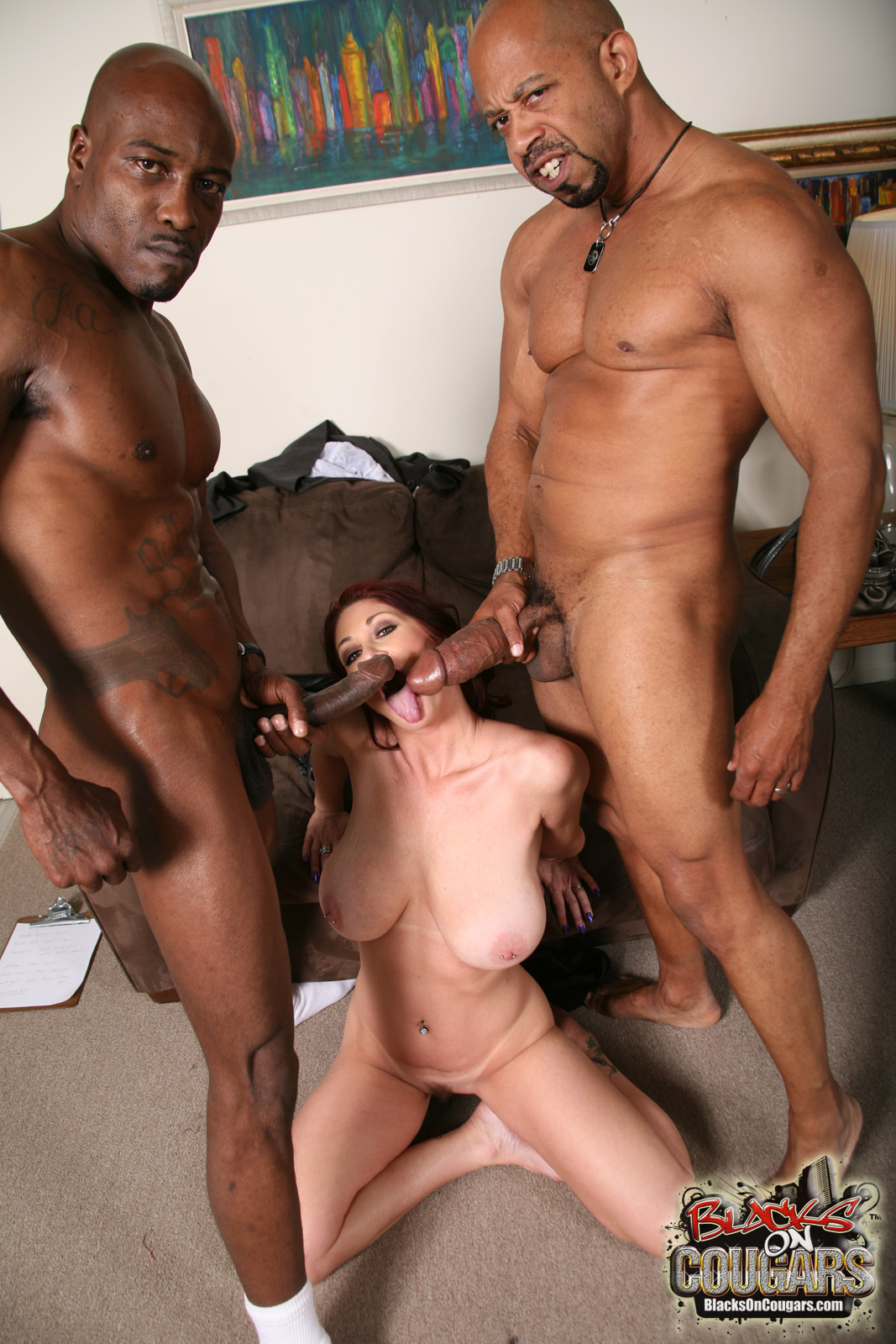 now on site | blacks on cougars official blog